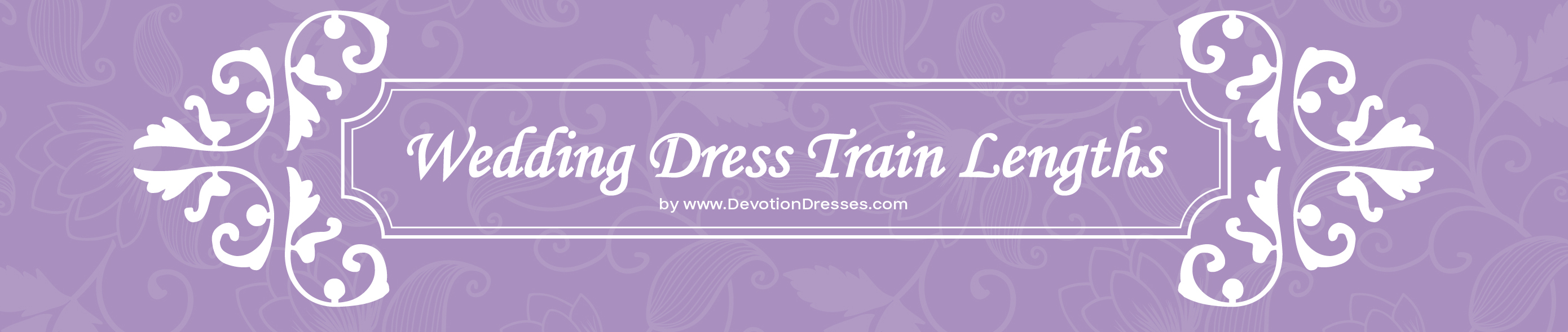Wedding Dress Train Length Guide
